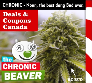 theChronicBeaver-deals-coupons-canada