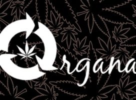 Organa Marijuana Wellness Centre