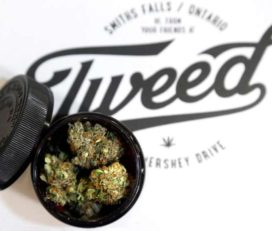 Tweed Cannabis Store Brandon
