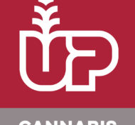 UP Cannabis Inc.