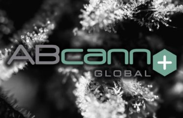ABcann Medicinals – Medical Marijuana