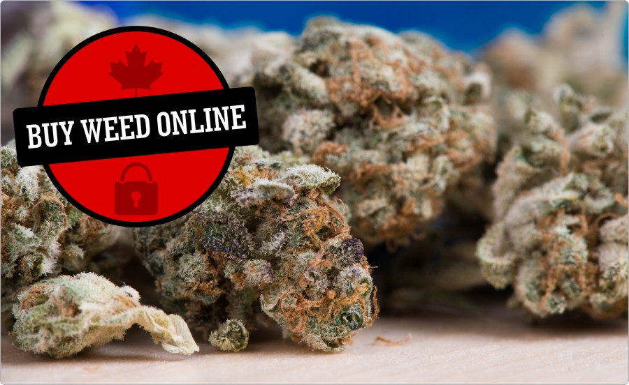 buy-weed-online-canada-marijuana-dispensaries-mom