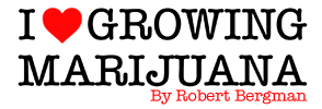 How to Grow Marijuana Robert Bergman