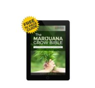 I Love Growing Marijuana – Guides, Seeds & Experts