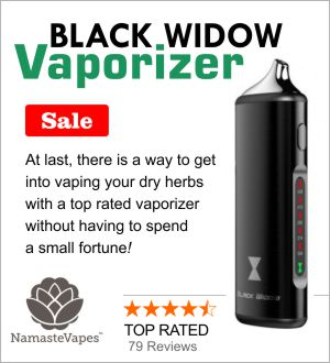 buy-black-widow-vaporizer-online-namaste-vapes