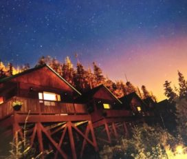 Bear Cove Cottages 420 Rentals – Sports Fishing & Wellness Retreats