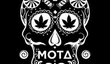 Mota Cannabis Infused Products