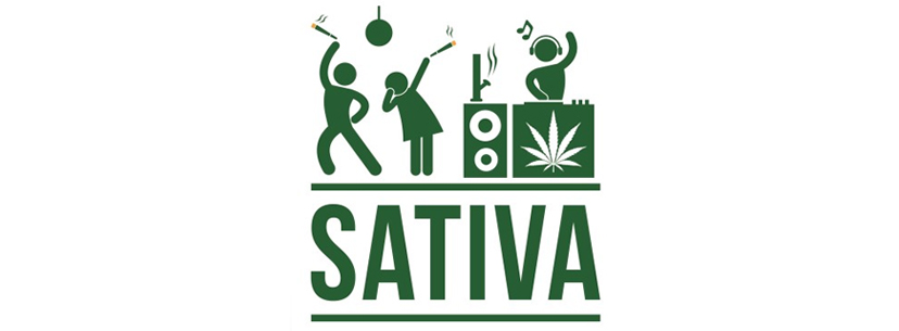 sativa-profile-energizing-and-stimulating-effect