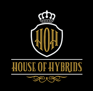 house-of-hybrids-lloydminster-retail-cannabis-storefront-alberta-03
