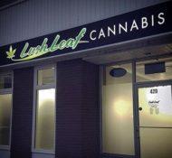 Lush Leaf Cannabis
