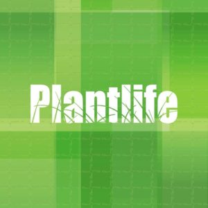 plant-life-licensed-retail-cannabis-lloydminster-alberta-1