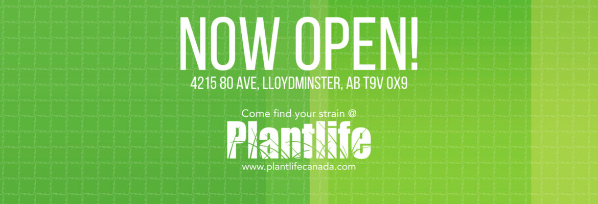 Plant Life Cannabis Dispensary