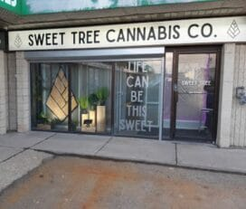 Sweet Tree Cannabis Co – Swift Current