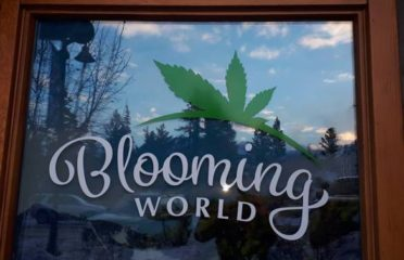 Blooming World Cannabis – Invermere