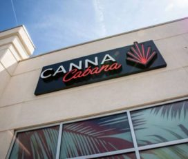 Canna Cabana – Burlington