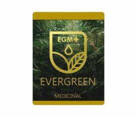 Evergreen Medicinal Canada