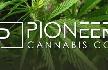 Pioneer Cannabis Co Burlington
