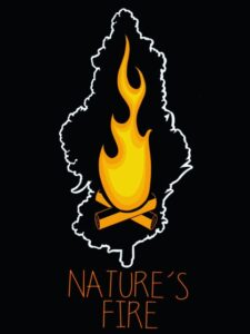 natures-fire-concentrates-wholesale-retail