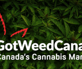 Got Weed Canada