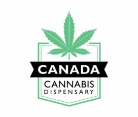 Canada Cannabis Dispensary – Mail Order Marijuana