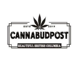 CannabudPost – BC's Best Online Dispensary