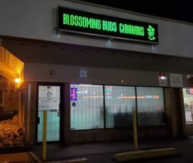 Blossoming Buds Cannabis Inc. – Kamloops