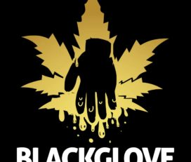 Black Glove Same-Day Delivery