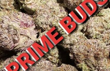 Prime Buds Weed Delivery