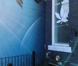 The Bend Cannabis Co. – Kensington