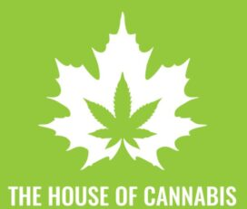 The House of Cannabis – Kingston