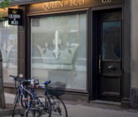 Queen of Bud – Toronto